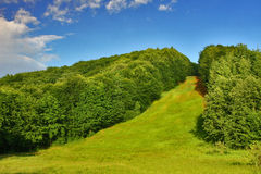 Summer slope cut trough dense lush forest. Summer slope cut trough dense lush forest in vivid colors and blue sky Stock Photography