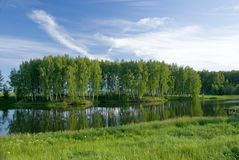 Summer small lake Stock Photography
