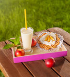 Summer snacks Royalty Free Stock Image