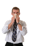 Summer Sniffles. A businessman holding a tissue to his nose while he sneezes Royalty Free Stock Image