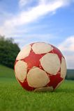 Summer soccer Royalty Free Stock Photo