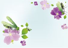 Summer soft background Royalty Free Stock Photography