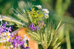 Summer solstice, girls` head decorative wreaths. One wreath of white daisies and violent flowers; the second crown of the cornflowers royalty free stock photo