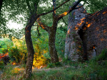 Summer solstice landscape, Italy. Amazing bright orange light effects through the woods, with old church ruins. This ancient effect happens only during the royalty free stock photo