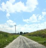 Summer on a Sothern Backroad. Sothern backroad. Blue skies, cornfields , and beautiful clouds royalty free stock photos
