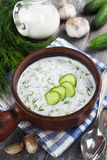 Summer soup with cucumbers, yogurt and fresh herbs Royalty Free Stock Photos