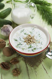 Summer soup with cucumbers, yogurt and walnuts Stock Photos