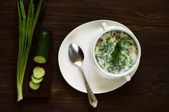 Russian traditional cold soup stock images