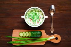 Russian traditional cold soup  in a white plate  and ingredients for cooking on a dark background,  top view,copy space, close up. Summer soup in a white plate Royalty Free Stock Image