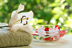 Summer spa Royalty Free Stock Images