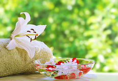 Summer spa Royalty Free Stock Image