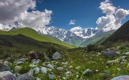 Summer space. View on the glacier in Avaneti mountains in Georgia Royalty Free Stock Photography