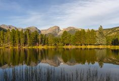 Summer on Sprague Lake in Rocky Mountain national Park royalty free stock photography