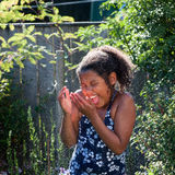 Summer Spray Stock Image