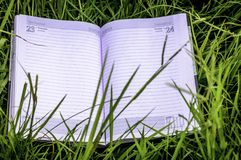 Summer spring background with open book. Back to school. Copy Space stock photography