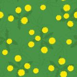 Summer field of yellow dandelions seamless pattern. Summer or spring glade of bright yellow green dandelions simple seamless Vector Illustration