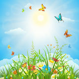 Summer or spring landscape Stock Photography
