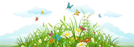 Summer and spring meadow banner Stock Images