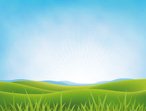 Summer Or Spring Meadows Background Royalty Free Stock Photo