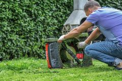 Summer and spring season sunny lawn mowing in the garden.. stock photo