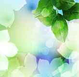 Summer or spring vector Stock Images