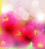 Summer or spring vector Stock Image