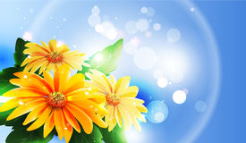Summer or spring vector Royalty Free Stock Image