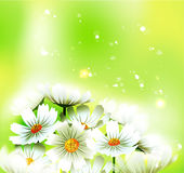 Summer or spring vector Stock Photos