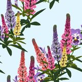 Summer spring wild lupines pink, violet and yellow flowers with green leaves. Light background. Seamless floral pattern. Textile pattern. Field of flowers Royalty Free Stock Photography