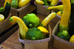 Summer Squash. Several varieties of summer squash are offered for sale at a farmers market Stock Image