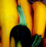Summer Squash Stem. The swirled green stem of a summer squash provides a dramatic contrast against a backdrop of bright yellow summer squash for sale at a local Stock Photos