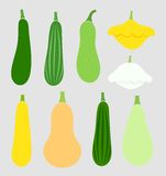 Summer squash vegetables Stock Photo