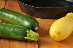 Summer squash and zucchini Stock Photography