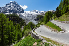 Summer Stelvio Pass (Italy) Stock Image