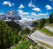 Summer Stelvio Pass Italy Royalty Free Stock Photo