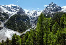Summer Stelvio Pass (Italy) Stock Photography