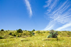 Summer steppe Royalty Free Stock Photography