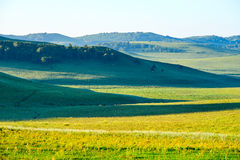 The summer steppe Royalty Free Stock Image