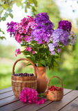 Summer still life Royalty Free Stock Photo