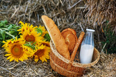 Summer Still Life with bread and milk outdoors Royalty Free Stock Photography