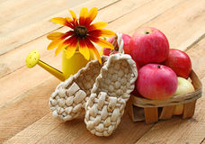 Summer still life with decorative sandals made of bark and small Royalty Free Stock Photography