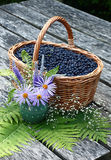 Summer still-life on a garden table. On a garden table there is a basket with a bilberry and a vase with the flowers Stock Photo
