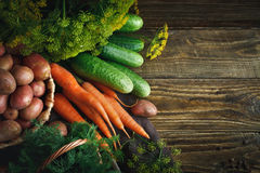 Summer still life of ripe vegetables and dill. Ripe vegetables on a wooden table royalty free stock image