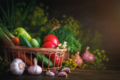 Summer still life of ripe vegetables and dill. Ripe vegetables on a wooden table stock image