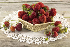 Summer still life with strawberries in basket Royalty Free Stock Images