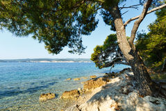 Summer stony beach (Croatia) Royalty Free Stock Photography