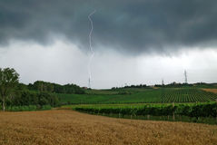 Summer storm. With lightning and wind Royalty Free Stock Photos