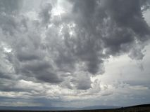 Summer storm Stock Image