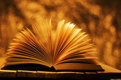 Summer story, book on gold vibrant background. Royalty Free Stock Photography