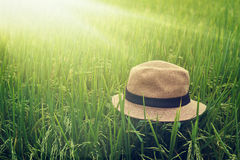 Summer straw hat on harvest paddy field, relaxing time Stock Images